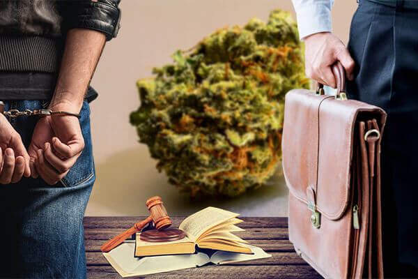 Dallas TX Marijuana Lawyer, Dallas TX Marijuana Attorney, Dallas TX Drug Lawyer, Dallas TX Drug Attorney